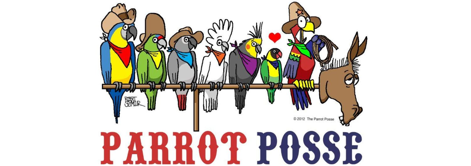 Welcome to The Parrot Posse